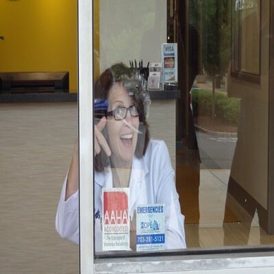 The veterinarian smiling at the camera through the window