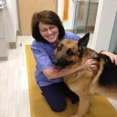 The veterinarian hugging a German Shepherd