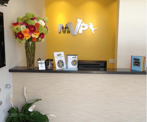 mvp-receptionandtv